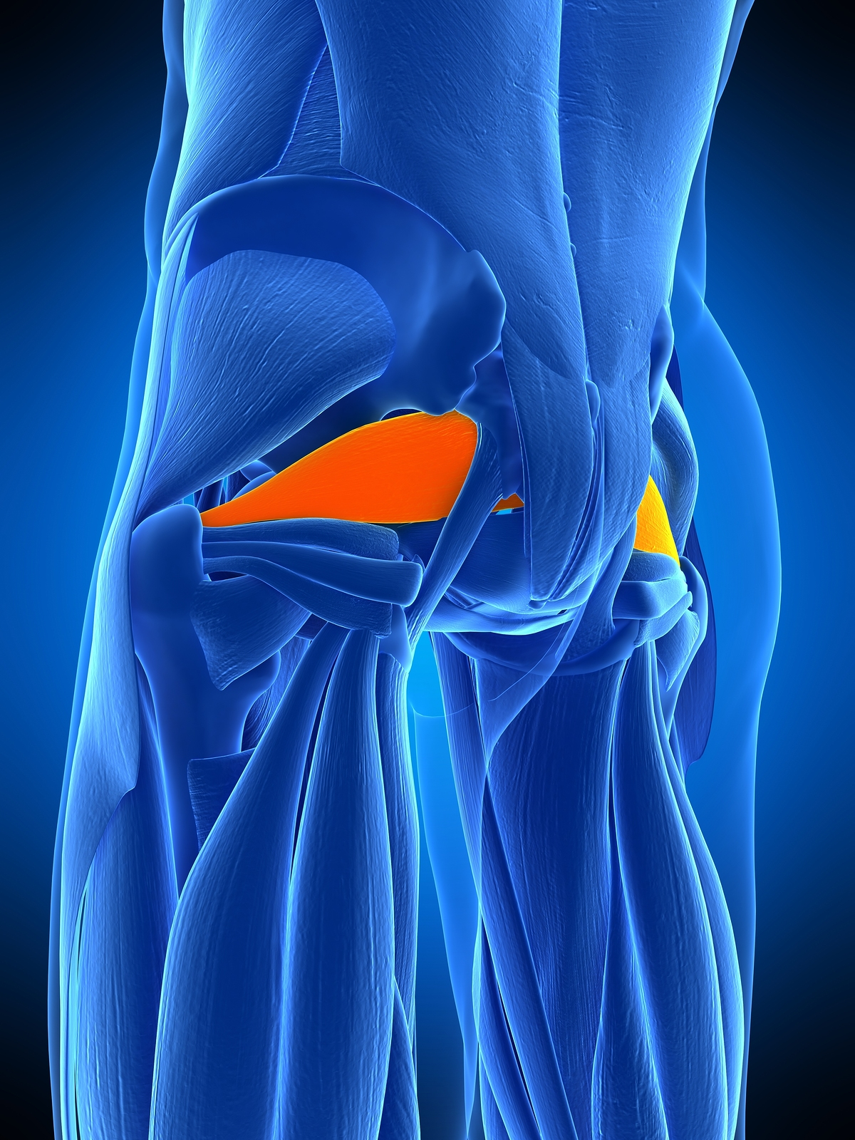 How Chiropractic Care Can Help Relieve Piriformis Syndrome